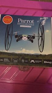 Parrot Flying Spider Drone