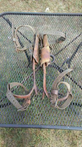 vintage klein tools climbing gaffs climbing spikes