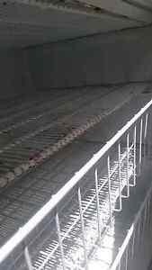 Fridge/ Freezer (Working) Rowville Knox Area Preview