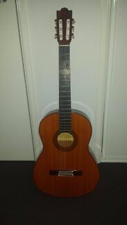 guitar (with bag)