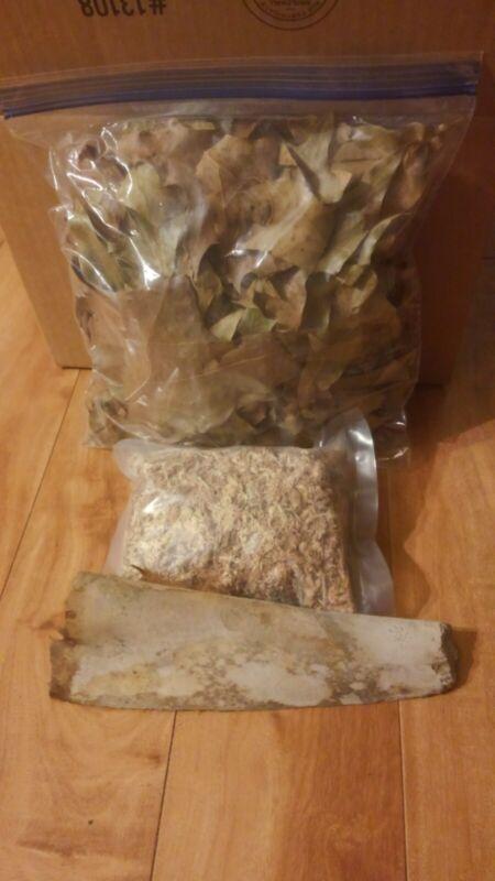 1 Gal Oak Leaves and 1 Palm Bark for  Vivarium, Terrariums, Isopods, Millipedes