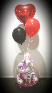 BALLOONS BUSINESS Gillieston Heights Maitland Area Preview