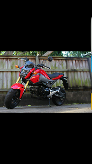 Wanted: after honda grom