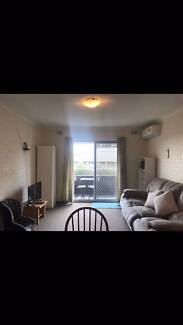 Single Room $85pw, Shared Room $50pw