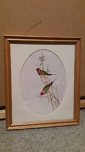 Framed Set of 3 Birds/Finches Panania Bankstown Area Preview