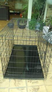 Large Dog Crate Burpengary Caboolture Area Preview