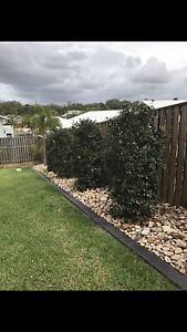 Landscaping Turf Laying Home Renovation Gold Coast Hope Island Gold Coast North Preview
