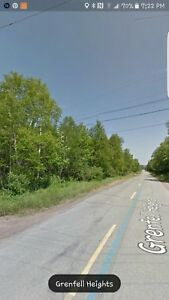 Land For sale Grenfell Heights(Grand Falls Windsor) NL