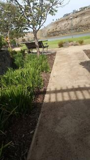 Gavy's  gardens services from $ 25
