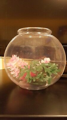 Plastic fish bowl with two plants