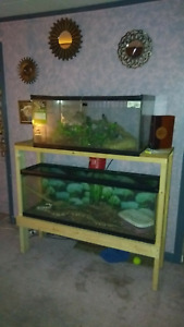 2 Aquariums with assorted snake items