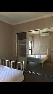 Strathfield Sydney Olympic Park Looking for female tenant Burwood Burwood Area Preview