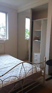 Lidcombe Room for rent $250 incl bills Lidcombe Auburn Area Preview