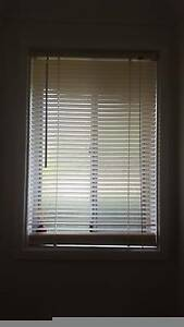 Venetian blinds - long Capital Hill South Canberra Preview