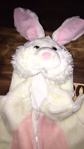 Size 2-3 year bunny suit