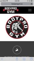 Gym membership bodypro