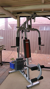 Exercise Gym Set St Clair Penrith Area Preview