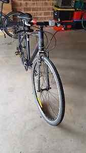 Reid commuter bike - urban xo Burwood Burwood Area Preview