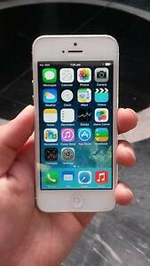 As New iphone 5 16 gb silver unlocked with charger and warranty Surfers Paradise Gold Coast City Preview