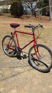 "Vintage Repco ""SKYLINE"" Old School Mountain Bike"