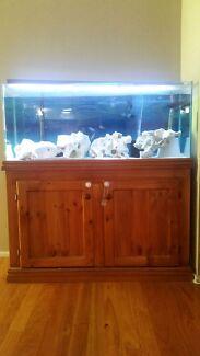 4ft Aquarium Aberglasslyn Maitland Area Preview