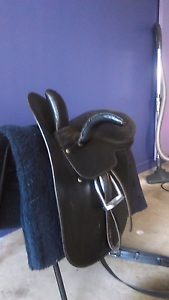 Black leather side saddle Daisy Hill Logan Area Preview