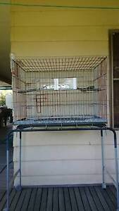 Bird Cage, Cocky, Galah, Corella. Ellalong Cessnock Area Preview