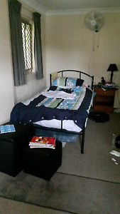 Single Room in Large Sharehouse Maroochydore Maroochydore Area Preview