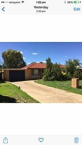4 bedroom house for lease in Wagga Estella Wagga Wagga City Preview