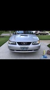 1999 manual v6 mustang will TRADE for jeep!!!
