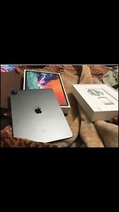 ipad pro 12:9inch 256gb 4genration wifi only
