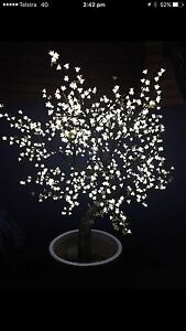 LED cherry blossom trees x2 Doncaster East Manningham Area Preview