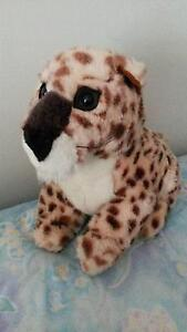 Soft toy - Leopard Aberglasslyn Maitland Area Preview