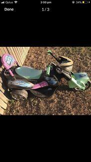 Ninja Turtles Bike