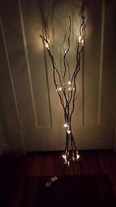 BRANCHES & LED FAIRY LIGHTS - BATTERY & PORTABLE - EXCELLENT COND Georgetown Newcastle Area Preview