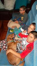 Live In Nanny Required Kippa Ring Qld Kippa-ring Redcliffe Area Preview