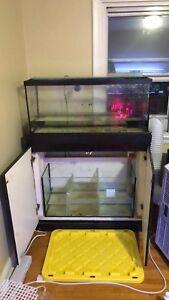 Bare 29 gallon salt water display + sump + 4 bulb t5 light