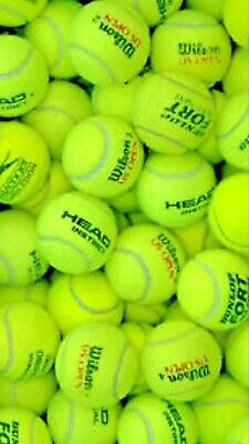 24 Used Tennis Balls For Dogs In Great Condition Clean & Pet Friendly Ex Match