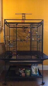 Grande cage pour perroquet ou autres oiseaux