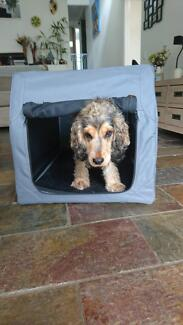 Dog Carrier and Training Crate - Folds out and extends