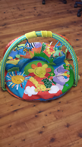 Baby play mat Bolwarra Maitland Area Preview