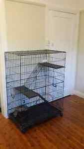 Ferret/Cat/Bird/ Cage two level's Haberfield Ashfield Area Preview