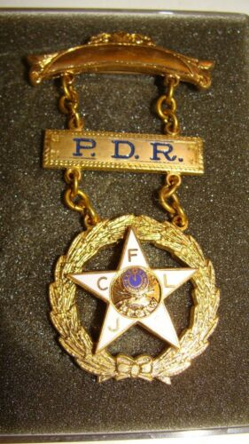Vintage Elks ASSN IBPOEW Fraternal Lodge Past President Pendant Medal Pin Badge