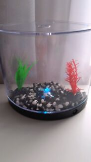 Simease fighting fish tank Currambine Joondalup Area Preview