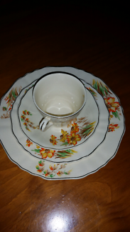 J & G Meakin Sunshine full dinner service