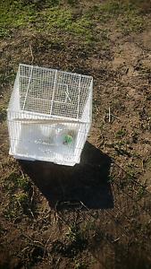 Bird cage s $10 each Bolivar Salisbury Area Preview