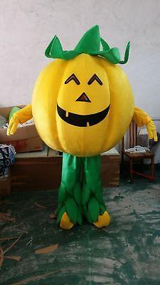 Halloween Pumpkin Mascot Costume Parade Vegetable Fancy Dress Cosplay Adult Suit