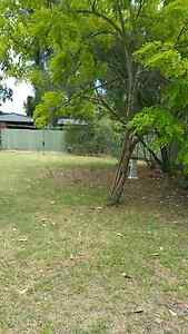 Holiday house Port Stephens Salt Ash 28th Jan to 7 Feb Salt Ash Port Stephens Area Preview