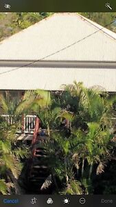 House for rent 265.00 per week Maryborough Fraser Coast Preview