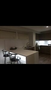 Granny flat studio for rent Terrigal Terrigal Gosford Area Preview